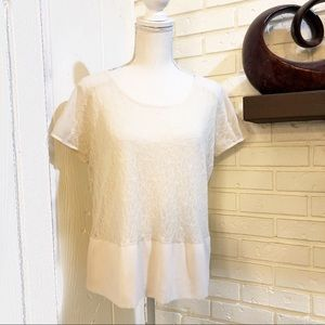 Kensie Short Sleeved Lace Top, Size Small